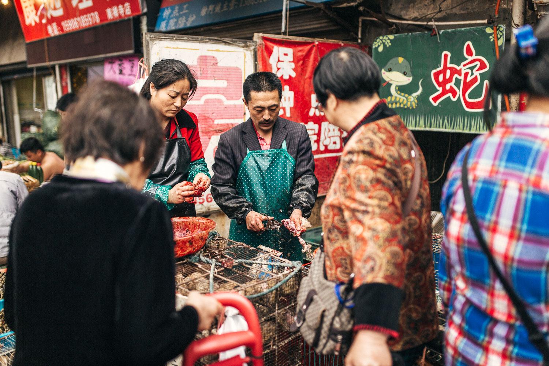 Shanghai_Grenzing-2-2