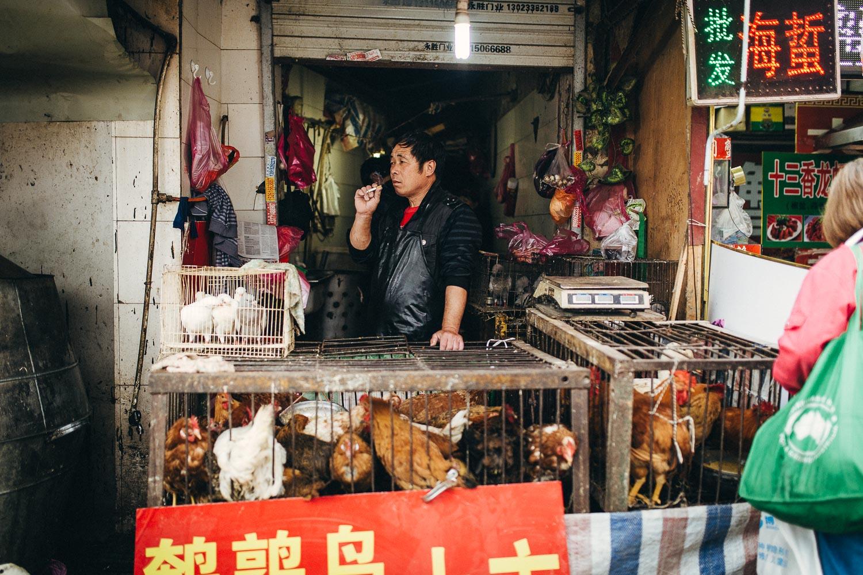 Shanghai_Grenzing--9