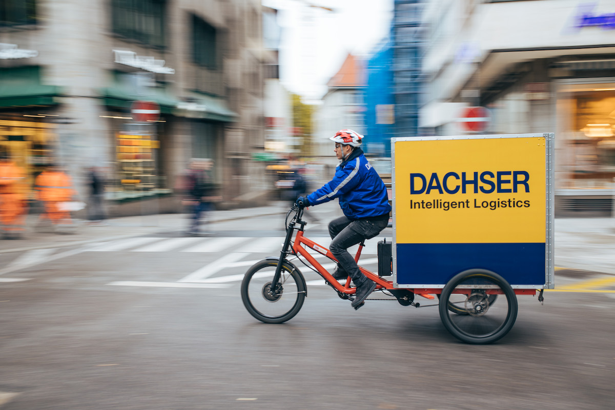 dachservelo-4882