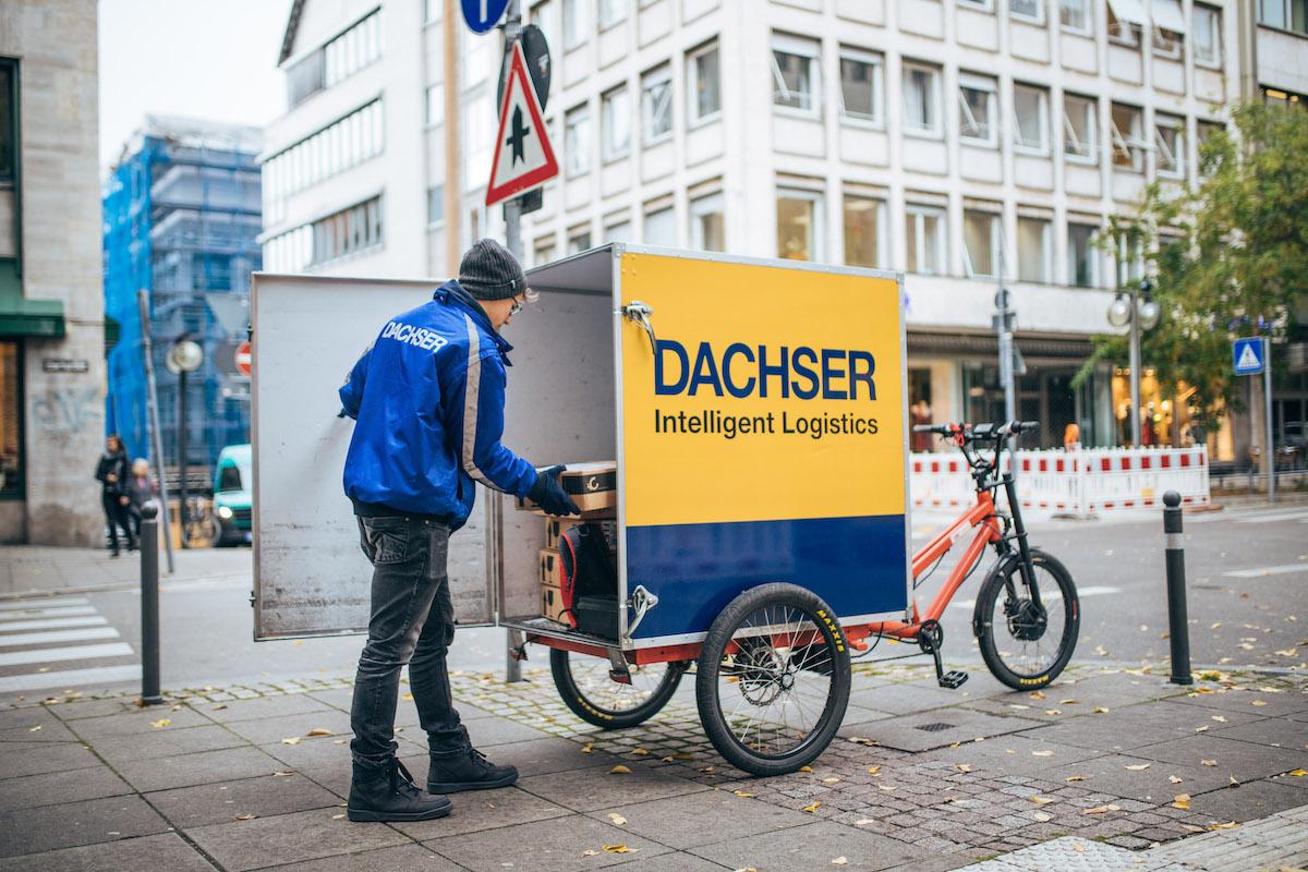 dachservelo-4884